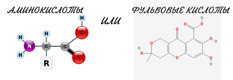 Фульвовая кислота или аминокислоты? Что эффективнее для листовой обработки?